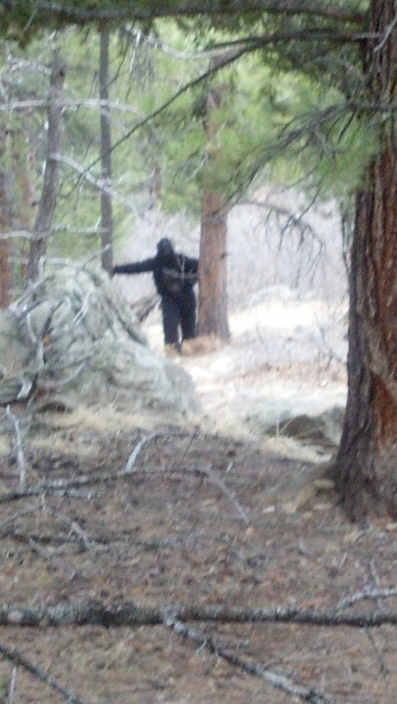 squatch sighting